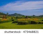 silverlake vineyard grape... | Shutterstock . vector #473468821