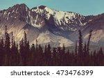 mountains of alaska in summer | Shutterstock . vector #473476399
