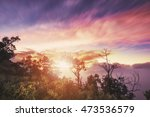 silhouette branches with tree... | Shutterstock . vector #473536579