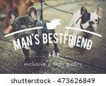 Puppies Pets Man's Bestfriend...