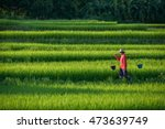 farmer ladder agriculture china. | Shutterstock . vector #473639749
