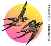 vector hand drawn swallow bird... | Shutterstock .eps vector #473664991