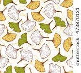 medicinal plant ginkgo biloba.... | Shutterstock .eps vector #473870131