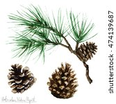 watercolor nature clipart   pine | Shutterstock . vector #474139687