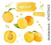 set of apricot isolated on... | Shutterstock . vector #474375415
