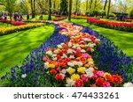Netherlands   May 6  2016 ...