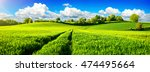 panoramic landscape with... | Shutterstock . vector #474495664