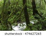 when the falling rain in the... | Shutterstock . vector #474627265