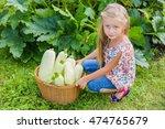 Lovely Girl Gathered Zucchini...
