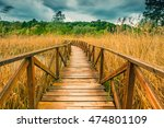 wooden path on cane thicket and ... | Shutterstock . vector #474801109