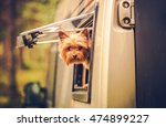 rv travel with dog. motorhome...