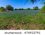 A Wide Angle View Of A...