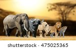 Small photo of Big five africa - Lion, Elephant, Leopard, Buffalo and Rhinoceros