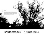 silhouette of a forest of trees.... | Shutterstock .eps vector #475067011