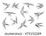 swallow line set | Shutterstock . vector #475152289