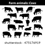 Different Cows Silhouettes Set...