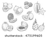 exotic and tropical fruits.... | Shutterstock .eps vector #475199605