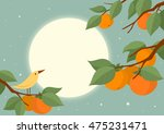 full moon and persimmon tree...