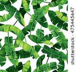 seamless tropical pattern with... | Shutterstock .eps vector #475445647
