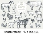 farm animals. isolated on white ... | Shutterstock .eps vector #475456711