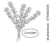 hand drawn lavender. organic... | Shutterstock .eps vector #475460335