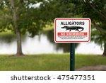 Alligator Warning Sign In...