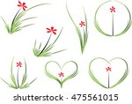 vector drawing orchid flower...