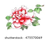 chinese painting peony  | Shutterstock . vector #475570069