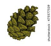 conifer cone  pine cone  hand... | Shutterstock .eps vector #475577539