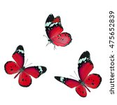 beautiful red butterflies... | Shutterstock . vector #475652839