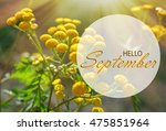 hello september wallpaper ... | Shutterstock . vector #475851964