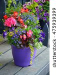 Colorful Assorted Flowers In...