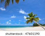 pristine beach with palm tree | Shutterstock . vector #47601190