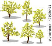 early autumn isometric trees... | Shutterstock .eps vector #476056411