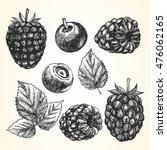 hand drawn set of berries.... | Shutterstock .eps vector #476062165