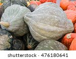 Blue Hubbard Winter Squash At...