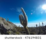 Cactus Or Middle Finger