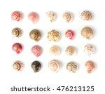 Sea Shells White Background...