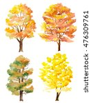 set of watercolor hand painted... | Shutterstock . vector #476309761