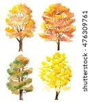set of watercolor hand painted... | Shutterstock . vector #476309761