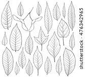 leaves outline set vector.... | Shutterstock .eps vector #476342965
