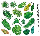 tropical leaves collection on... | Shutterstock . vector #476365771