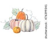 pumpkins. hand drawn watercolor ... | Shutterstock . vector #476399341