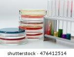 petri dish  microbiology | Shutterstock . vector #476412514