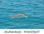 caretta greece dive head...   Shutterstock . vector #476435647