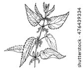 sketch  nettle  vector... | Shutterstock .eps vector #476439334