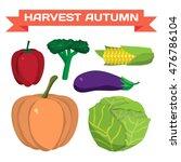 farm vegetables flat vector... | Shutterstock .eps vector #476786104