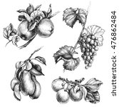 hand drawn fruit set.... | Shutterstock .eps vector #476862484