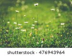 Vintage Floral Background With...