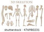 human bones 3d realistic vector ... | Shutterstock .eps vector #476980231